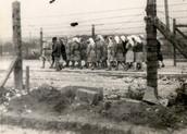 Plaszow camp