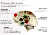 """""""The human with two brains"""""""