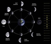 Phases of the moon on Mars