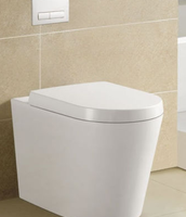 Built in Wall Toilet