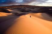 The Gobi Desert in the hot Summer.