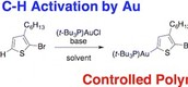 Preparation of an Aurylated Alkylthiophene Monomer via C–H Activation for Use in Pd-PEPPSI-iPr Catalyzed-Controlled Chain Growth Polymerization