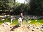 Annual dude ranch trip