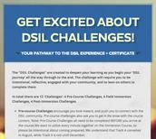 Reminder: DSIL 'Challenges'
