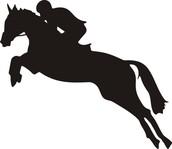 Premier Riding Lessons
