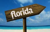 Go to the best parks in Florida