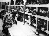 This is a picture of the beds that the jews had to sleep in during the holocaust at the camps.
