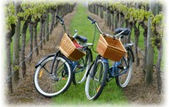 Wine Bike Tours