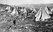 """אוהלים בהם התגוררו חלוצים מגדוד """"החלוץ"""""""