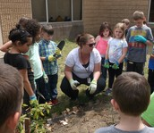 TR loves working in the student garden!