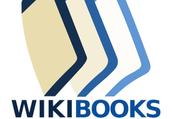 Resource 6: WikiBooks- Spanish Slang