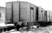 Cattle Cars