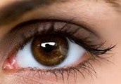 Eyelash growth products- For quick eyelash growth!