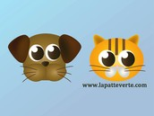Visitez notre site web:   www.lapatteverte.com