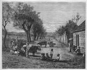 children on plantation