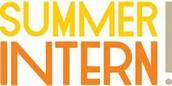 Summer Intern: