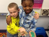Alex and his crab!  Paul and his turtle!