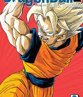 This is a cover of the many manga's of DBZ