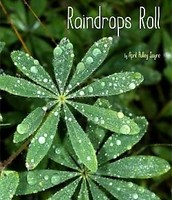 Raindrops Fall by April Pulley Sayre