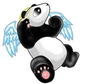 Panda Proud...