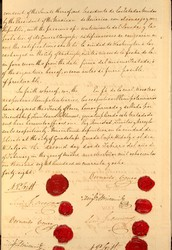 War with Mexico/Treaty of Guadalupe Hidalgo