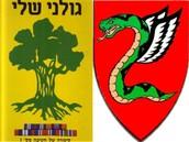 Go Golani and Tzanchanim!