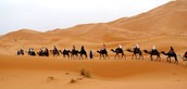 Three facts about the Sahara Desert