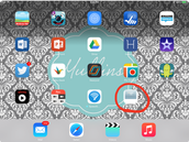 Step 6: Shortcut will look like an app on home screen
