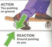 Newton Third Law Of Action Reaction