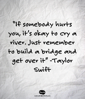 """""""If somebody hurts you, it's okay to cry a river.  Just remember to build a bridge and get over it"""" -Taylor Swift"""