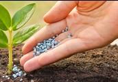 Fertillisers