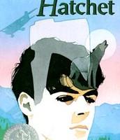 Hatchet