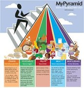 """My Plate"" compared to the ""Food Pyramid"""