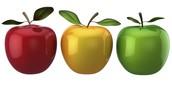 Peel Board Celebrates Public Education During Education Week – April 18 to 22