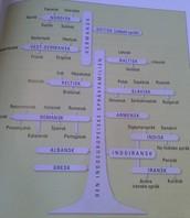 Det indoeuropeiske språktreet