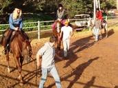 קבוצת רכיבה וטיפול בסוסים