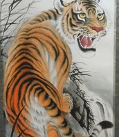 MY favorite animals are tigers