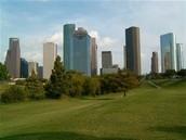 Houston Metropolitan Educational Diagnostician Association 39th Conference (2014)