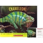 Chameleon! ~ Joy Cowley
