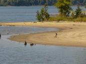 Lake Falls Recreation Area