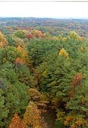 Indiana's Biosphere