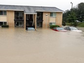 Flooding Cars and Houses