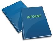 Informe de la Información