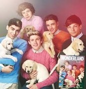 dogs with one direction