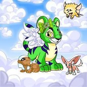 Neopets Mobile App - What You Need To Realize