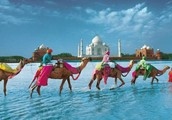 Welcome To Agra- The Symbol of Love