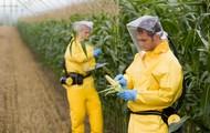 Scientists improve food