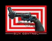 More gun control laws would reduce gun deaths.