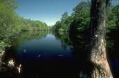 Little Pee Dee River