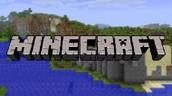mincraft videogame